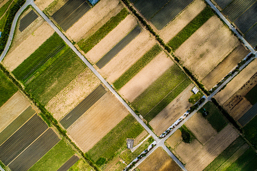 Aerial view of paddy field and road. - gettyimageskorea