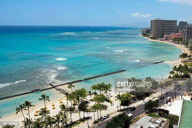 aerial view of palm trees on the beach, waikiki beach, honolulu, oahu, hawaii islands, usa - ワイキキビーチ ストックフォトと画像