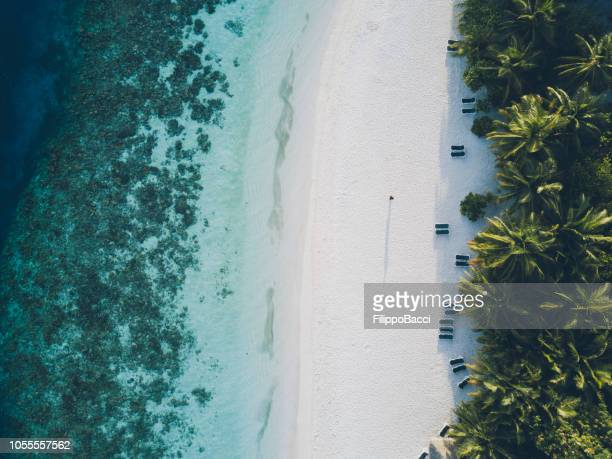 aerial view of paradisiac island in maldives - atoll stock pictures, royalty-free photos & images