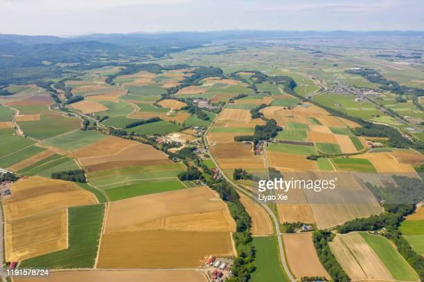 aerial view of patchwork fields - liyao xie stockfoto's en -beelden