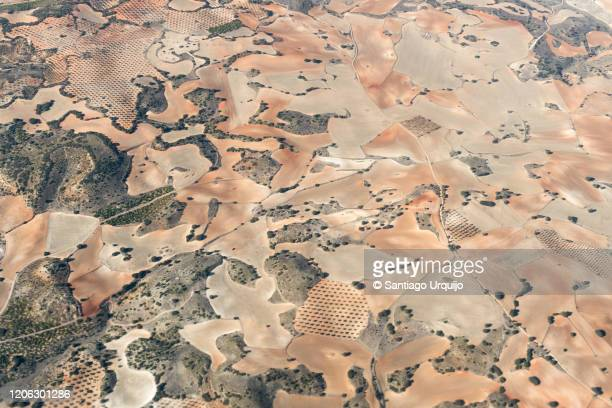 aerial view of patchwork landscape in castilla la mancha - 休耕田 ストックフォトと画像