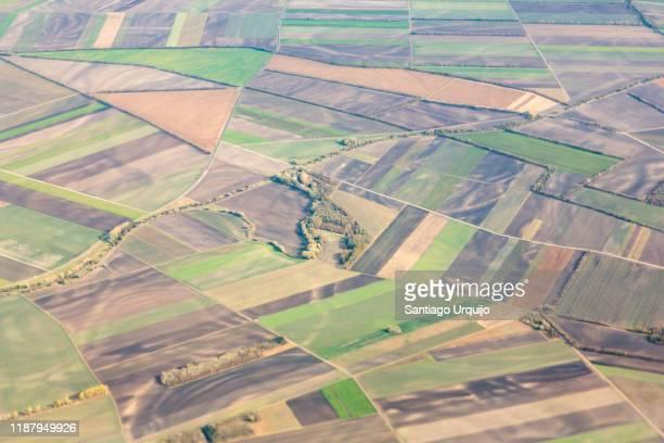 aerial view of patchwork landscape - 休耕田 ストックフォトと画像