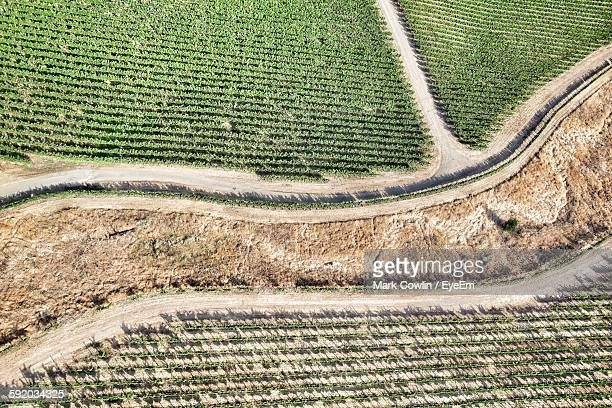 Aerial View Of Pathway Amidst Agricultural Land