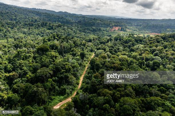 """Aerial view of Paul Isnard airstrip near the """"Montagne d'Or"""" base camp, the first French Guiana industrial gold mining project of international..."""