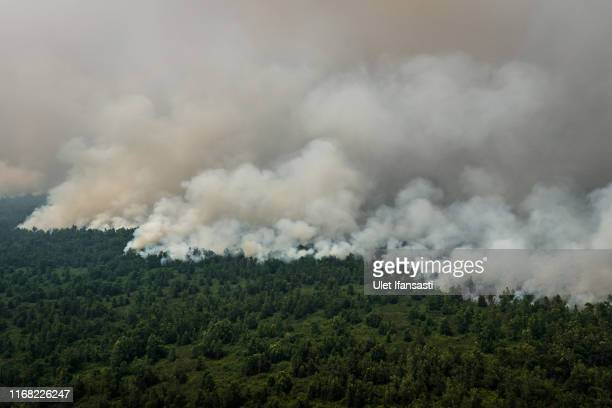 Aerial view of peatland and forest fires during fire patrol by Indonesian national board for disaster management on September 14, 2019 in Central...
