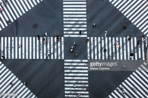 aerial view of pedestrian crossing, tokyo, japan - crossing stock pictures, royalty-free photos & images