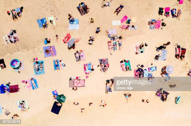 aerial view of people at the beach - day photos stock photos and pictures