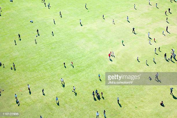 aerial view of people in lawn - 俯瞰 ストックフォトと画像