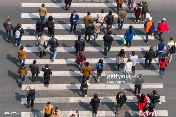 aerial view of people on busy pedestrian crossing, shanghai, china - 歩行者 ストックフォトと画像
