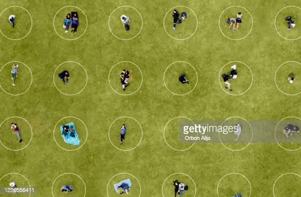 luchtmening van mensen het sociale distantiëren bij het park - openbaar park stockfoto's en -beelden