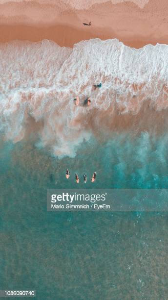 aerial view of people surfing in sea - lagos portugal stock photos and pictures