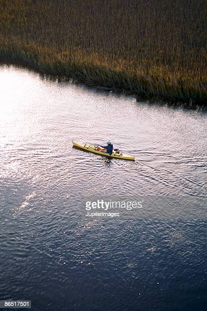aerial view of person kayaking - salt_marsh stock pictures, royalty-free photos & images