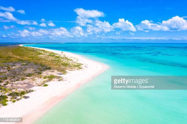 aerial view of pink sand beach, caribbean - isla de antigua fotografías e imágenes de stock
