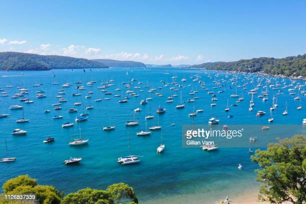 aerial view of Pittwater, Clarevill harbour Northern Beaches, Sydney Australia