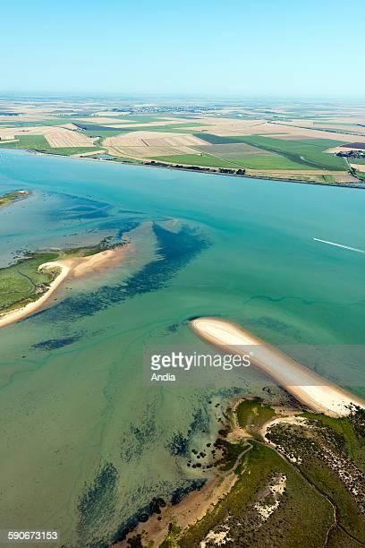 Aerial view of 'pointe d'Arcais' headland in 'anse de l'Aiguillon' cove in La Faute sur Mer the 'pointe d'Arcay' headland's sandy spit is an...