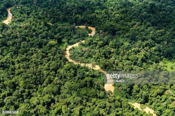 Aerial view of poluted river by clandestine gold mining in Amazonian forest on October 12 French Guyana / AFP PHOTO / Jody AMIET