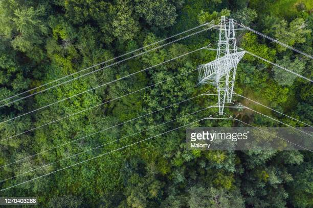 aerial view of power lines leading through forest. - power line stock pictures, royalty-free photos & images