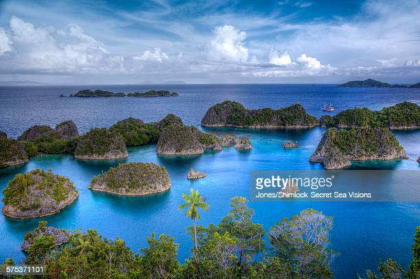 aerial view of raja ampat's rock islands - raja ampat islands stock photos and pictures