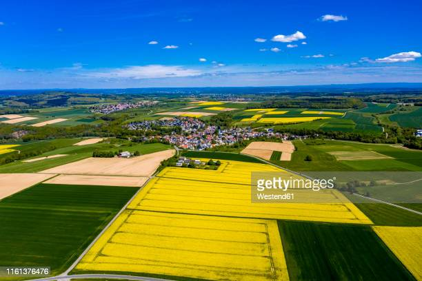 aerial view of rape fields and cornfields near usingen and schwalbach, hesse, germany - ヘッセン州 ストックフォトと画像