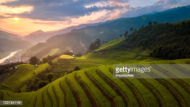 aerial view of rice terraces and the mountain landscape view during sunset time at mu cang chai, vietnam - reisterrasse stock-fotos und bilder