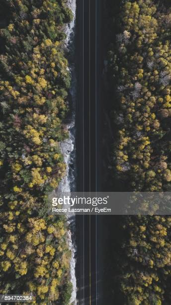 Aerial View Of Road Amidst Autumn Trees At Forest