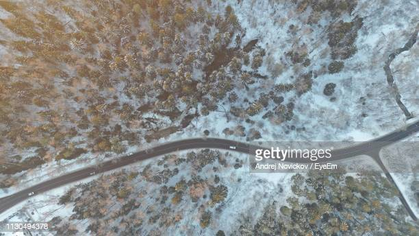aerial view of road amidst forest during winter - russia stock pictures, royalty-free photos & images