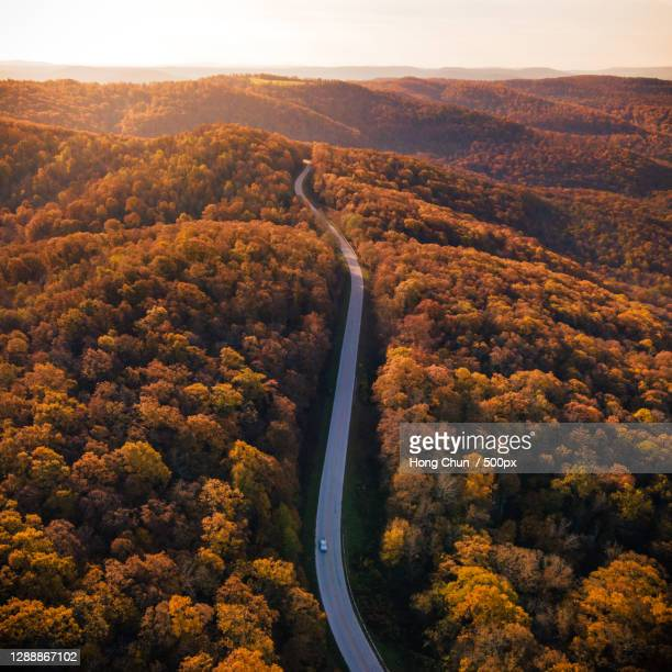 aerial view of road amidst trees during autumn,arkansas,united states,usa - アーカンソー州 ストックフォトと画像
