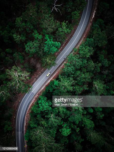 aerial view of road amidst trees in forest - curve stock pictures, royalty-free photos & images