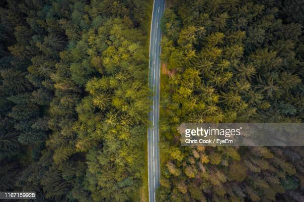 aerial view of road amidst trees in forest - forest stock pictures, royalty-free photos & images