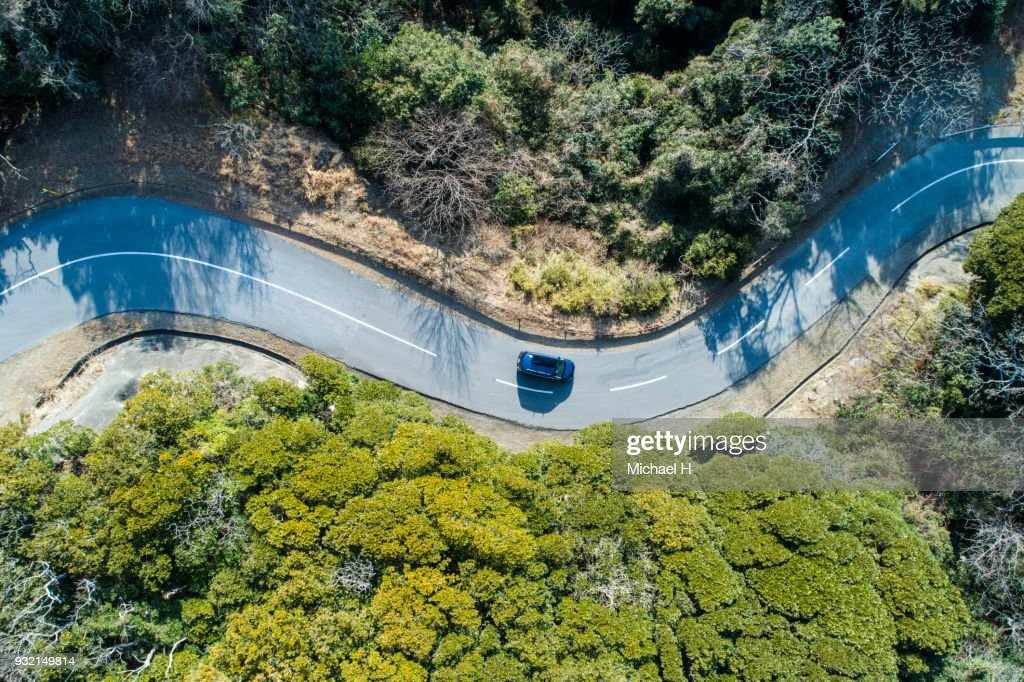 Aerial view of road amidst trees in forest. : Foto de stock