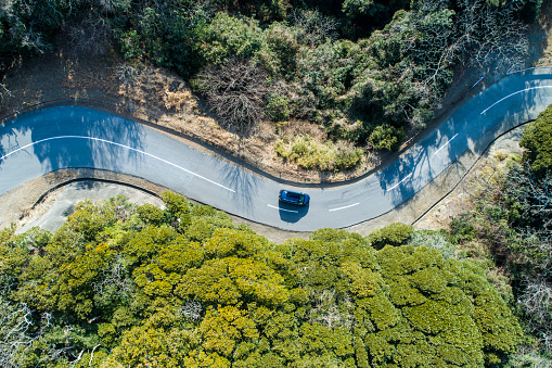Aerial view of road amidst trees in forest. - gettyimageskorea