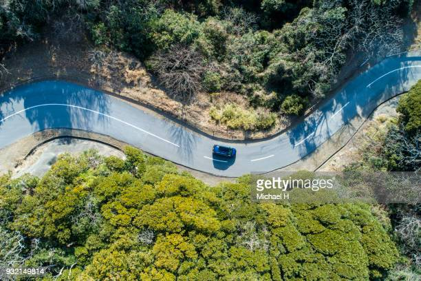 aerial view of road amidst trees in forest. - weg stockfoto's en -beelden