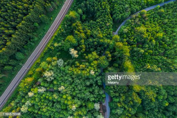 aerial view of road and railroad tracks amidst trees in forest. - verkehrswesen stock-fotos und bilder