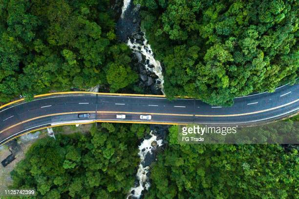 aerial view of road in a forest - traffic stock pictures, royalty-free photos & images