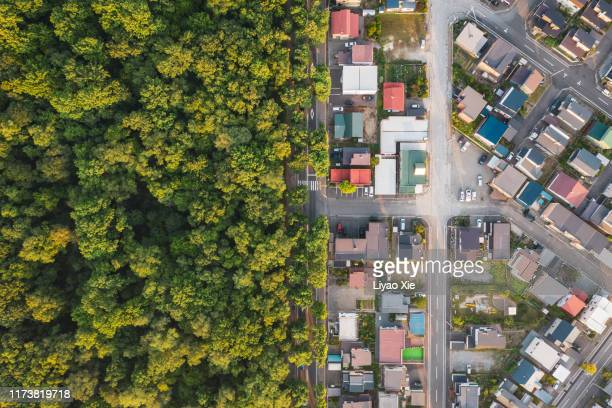 aerial view of road intersection - ecosystem stock pictures, royalty-free photos & images