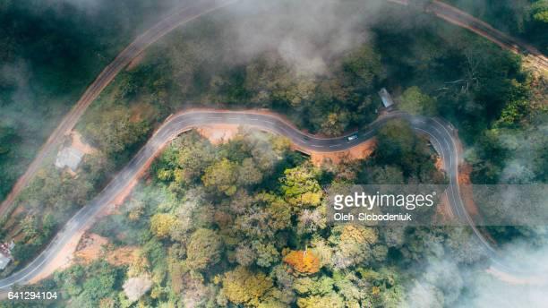 Vista aérea del camino junto a la plantación de té en Sri Lanka