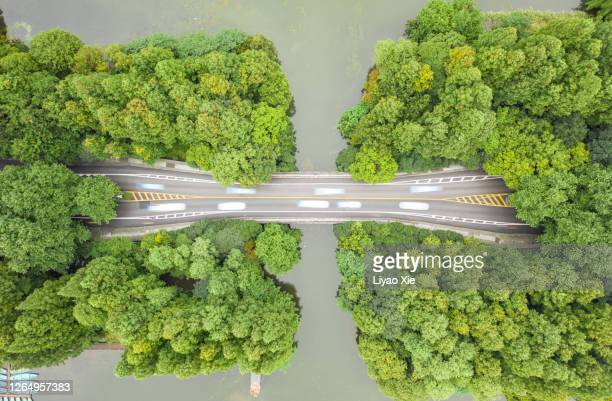 aerial view of road over west lake - liyao xie stock pictures, royalty-free photos & images