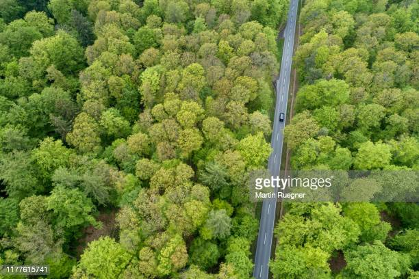 aerial view of road with car through forest, springtime. steigerwald, franconia, bavaria, germany. - forest stock pictures, royalty-free photos & images