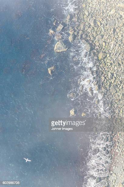aerial view of rocky beach and sea - waterkant stockfoto's en -beelden