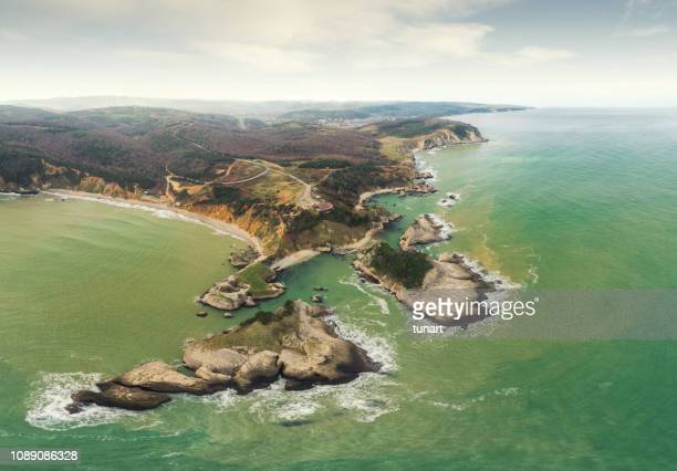 Aerial View of Rocky Black Sea Coast, Agva, Turkey