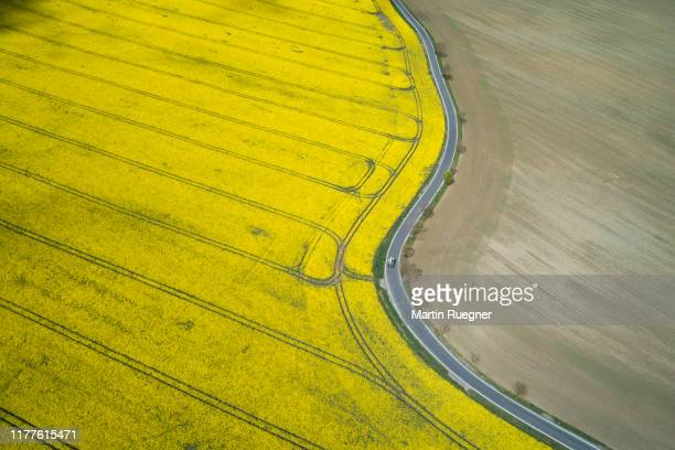 aerial view of rural road with traffic and oilseed rape field, springtime. saale-orla-kreis, thuringia, schleiz, germany. - thuringia stock pictures, royalty-free photos & images