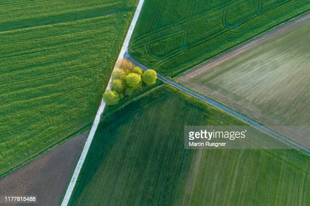 aerial view of rural road with trees and agricultural fields. franconia, bavaria, germany. - terra coltivata foto e immagini stock