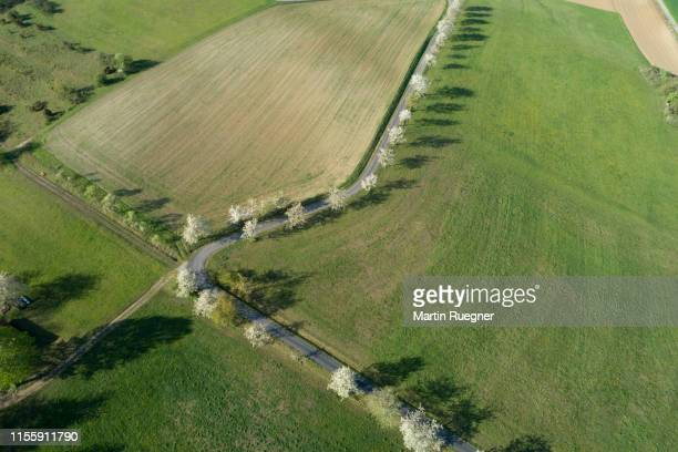 aerial view of rural road with white blossoming trees and agricultural fields. franconia, bavaria, germany. - schöne natur stock-fotos und bilder