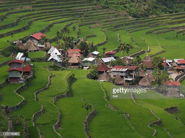 Aerial view of rural town with rice terraces