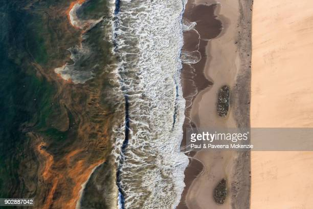 aerial view of sand dunes beside coast and sea with red tide algae bloom in the sea - red_tide stock pictures, royalty-free photos & images