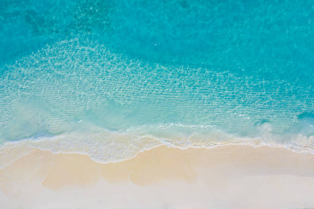 Aerial view of sandy tropical beach in summer. Aerial landscape of sandy beach and ocean with waves, view from drone or airplane. Nature environment, peaceful bright zen, freedom scene