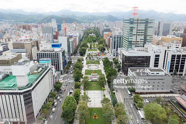 Aerial view of  Sapporo