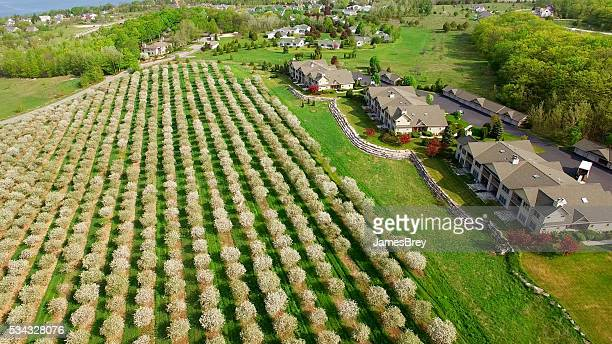 Aerial view of scenic Door County Wisconsin, cherry trees blossoming