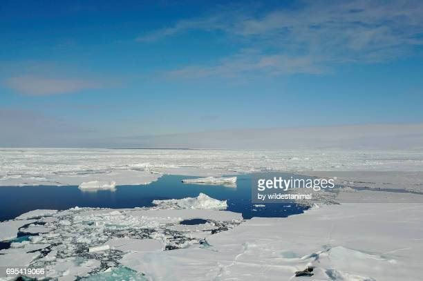 Aerial view of sea ice at the ice floe edge, northern Baffin Island, Canada.