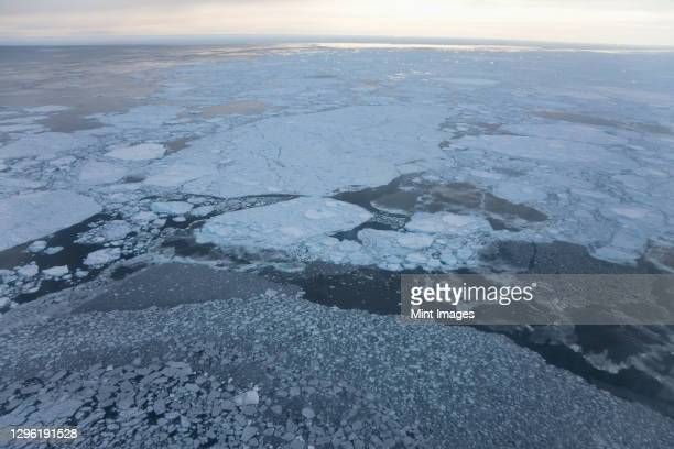 aerial view of sea ice, kulusuk, east greenland - pack ice stock pictures, royalty-free photos & images